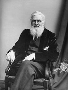 Alfred Russel Wallace (source: wikipedia)