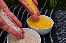 Golden rice (Source: wikipedia)